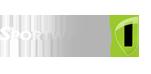 Sportwagen1 Logo - Sportwagen mieten und selbst fahren